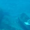 Underwater Archeologist